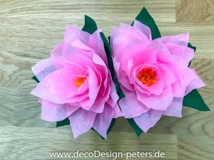 Seerosen rosa(c)decoDesign-peters